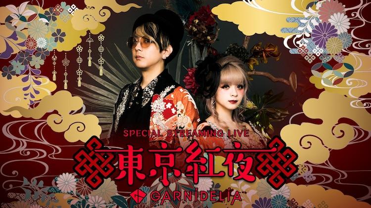 「Streaming+ GARNiDELiA Special Streaming Live『東京紅夜』」 ビジュアル