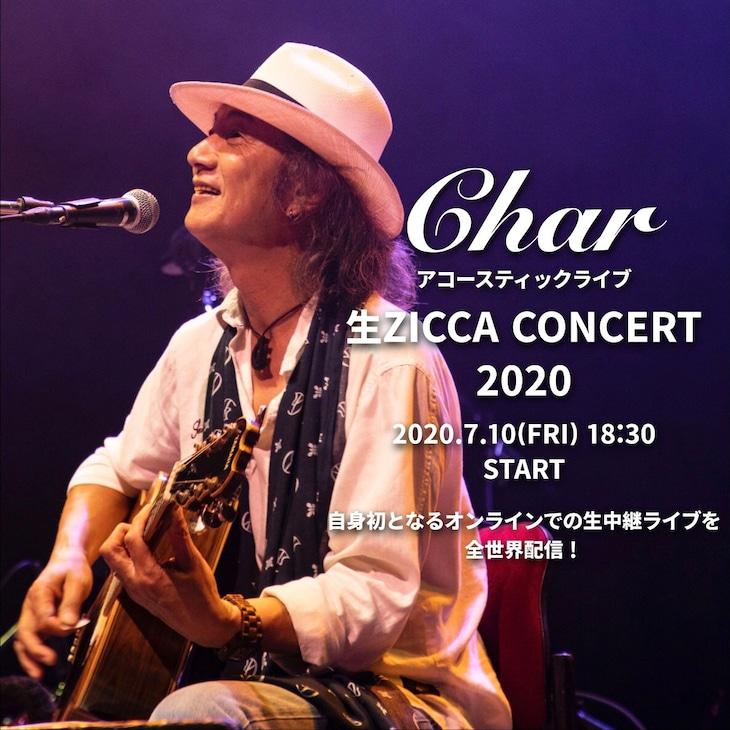 Char「生ZICCA CONCERT 2020」告知ビジュアル