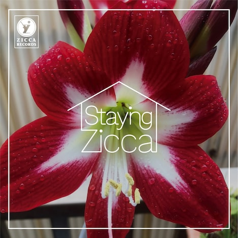Char「STAYING ZICCA」ジャケット