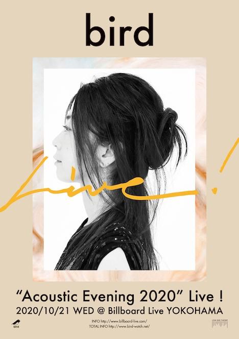 "「bird ""Acoustic Evening 2020"" Live!」告知ビジュアル"