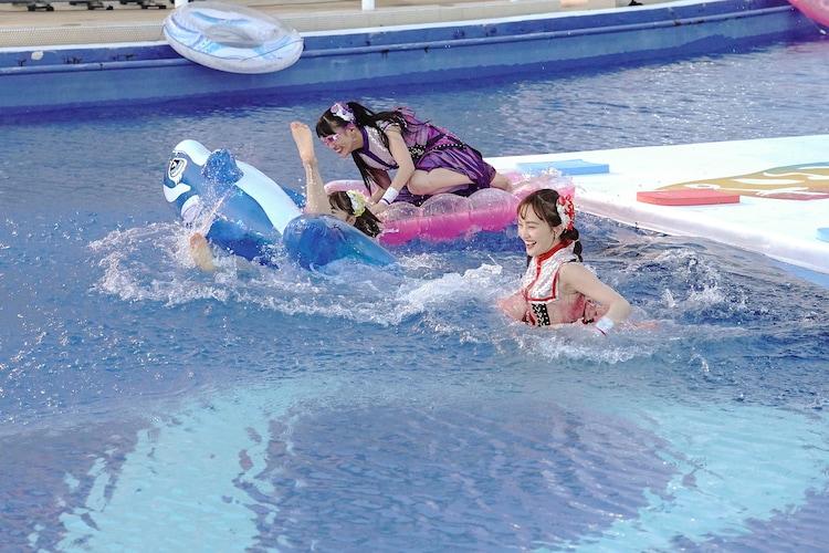 プールに飛び込むももいろクローバーZ。