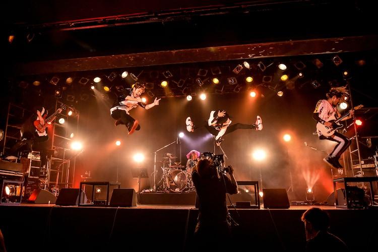 「FLOW 超会議 2020 ~アニメ縛りリターンズ~DVD/Blu-ray発売記念LIVE『アニメ縛りONLINE』」より。(photo by Masanori Fujikawa)