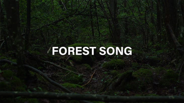 maco marets「Forest Song」ミュージックビデオのサムネイル。