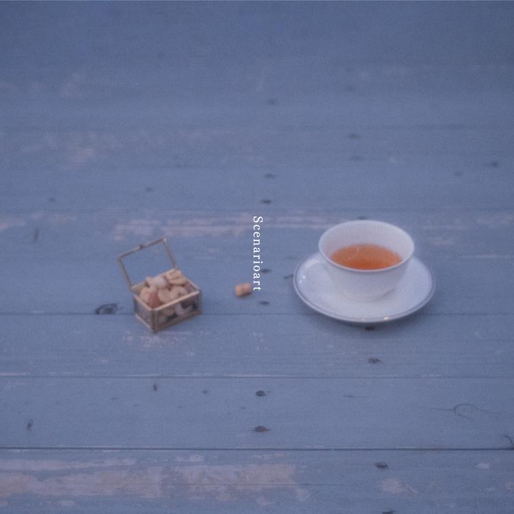シナリオアート「nuts a tea」ジャケット