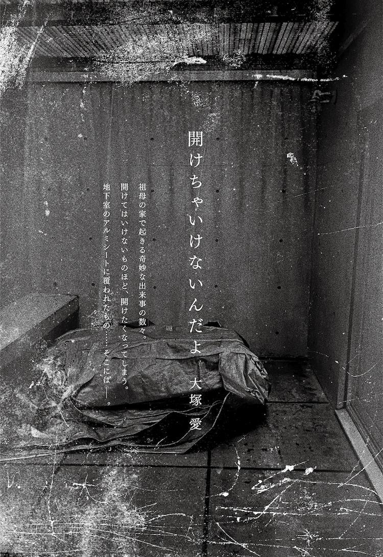 大塚愛「開けちゃいけないんだよ」扉画像