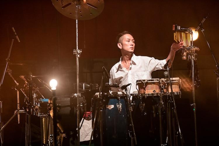 シマダボーイ(Perc)