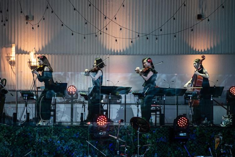 エビ中バンドの島田光理(1st Violin)、加藤かな子(2nd Violin)、筒田咲紀(Viola)、大浦萌(Cello)。
