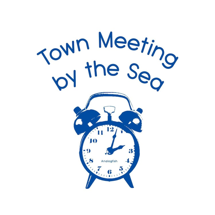 "「Analogfish 無観客配信LIVE ""Town Meeting by the Sea"" at 江ノ島OPPA-LA」DVDジャケット"