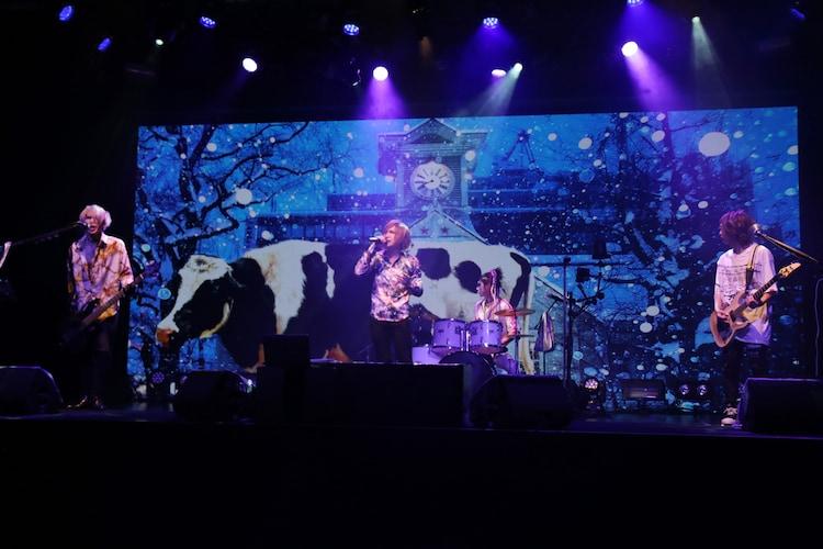 「『エアーツアー』〜気持ちは北海道〜」より、「もうバンドマンに恋なんてしない」を披露するゴールデンボンバー。(写真提供:ユークリッド・マネージメント)