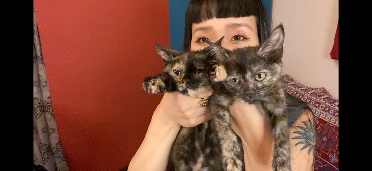 小春と愛猫のアンとニュイ。