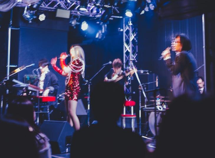 12月23日に行われた「LIVE AVANTDEMIC」の様子。(c)domudomu
