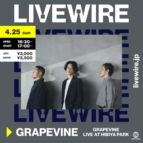 LIVEWIRE「GRAPEVINE LIVE AT HIBIYA PARK」告知ビジュアル
