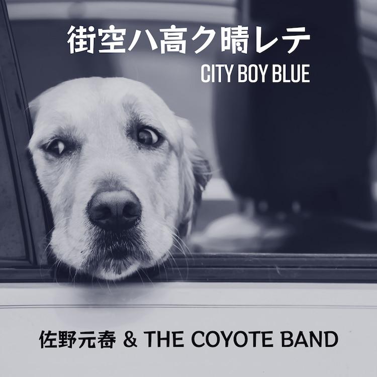 佐野元春&THE COYOTE BAND「街空ハ高ク晴レテ - City Boy Blue」配信ジャケット