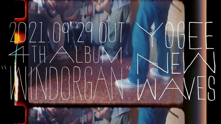 Yogee New Waves「WINDORGAN」発売告知ビジュアル