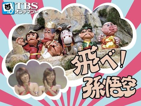 「飛べ!孫悟空」イメージ (c)TBS