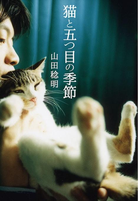 山田稔明「猫と五つ目の季節」の表紙。