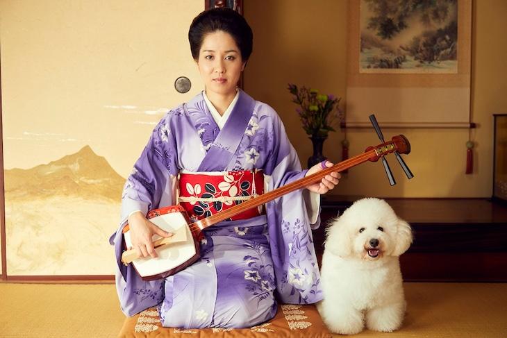 新ドラマ「僕とシッポと神楽坂」で芸者のまめ福を演じる尼神インター渚。(c)テレビ朝日