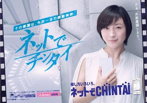 CHINTAIの広告ビジュアル。