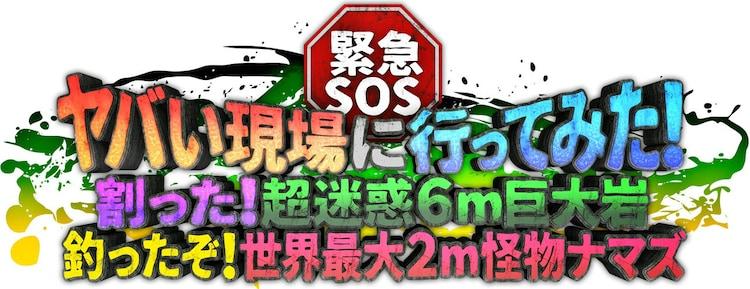 「緊急SOS!ヤバい現場に行ってみた!」ロゴ (c)テレビ東京
