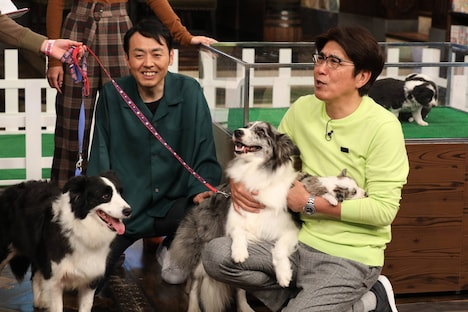 (左から)アンガールズ田中、石橋貴明。(c)フジテレビ