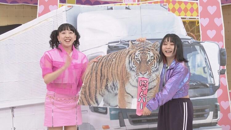 パーパー・あいなぷぅ(左)とにゃんこスター・アンゴラ村長(右)によるユニット「にゃんパー」。(c)中京テレビ
