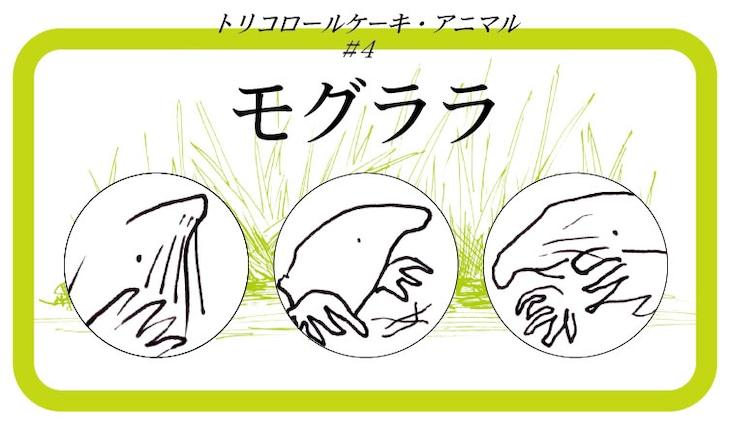 「トリコロールケーキ・アニマル#4『モグララ』」ビジュアル