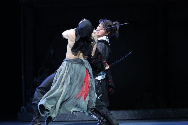 2014年に上演された「里見八犬伝」より、右は山崎賢人演じる犬塚信乃。