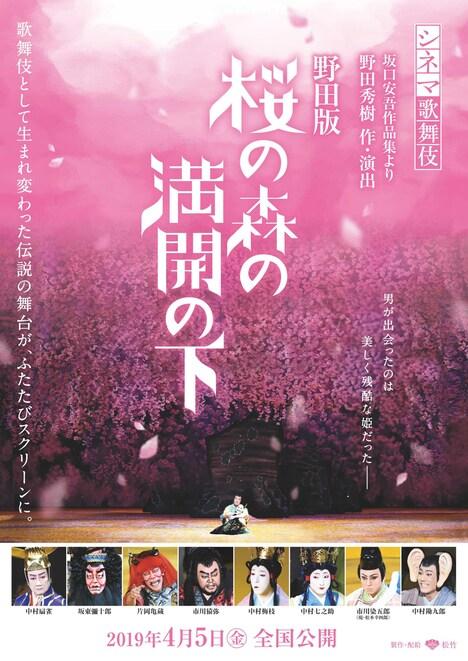 シネマ歌舞伎「野田版 桜の森の満開の下」チラシ表