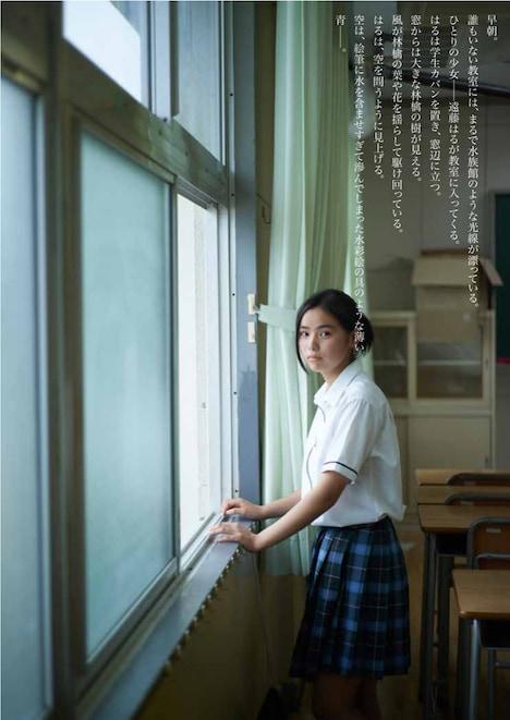 青春五月党「静物画」東京公演ビジュアル