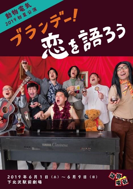 動物電気2019初夏公演「ブランデー!恋を語ろう」チラシ