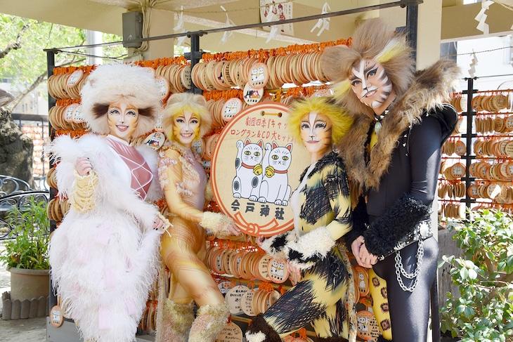 東京・今戸神社を参拝したミュージカル「キャッツ」のキャスト。