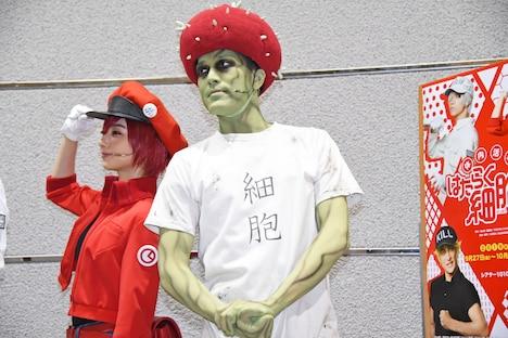 「体内活劇『はたらく細胞II』」囲み取材より、左から川村海乃、高木俊。