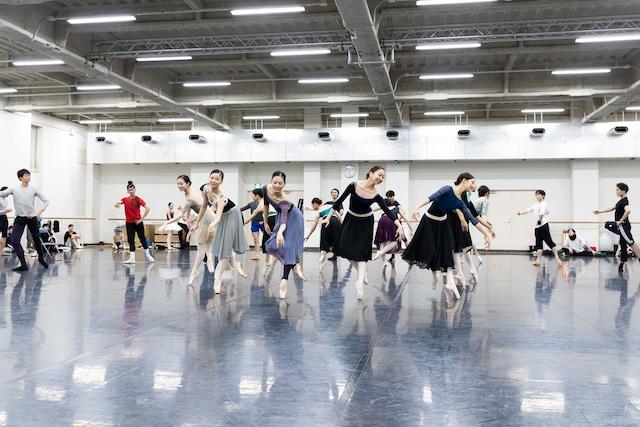 東京バレエ団「くるみ割り人形」公開リハーサルより。(Photo by Shoko Matsuhashi)