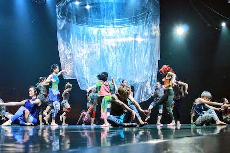 Baobab 第12回本公演「ジャングル・コンクリート・ジャングル」より。(photo by 石倉来輝)