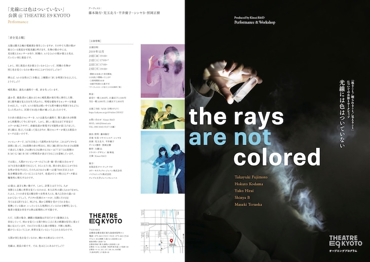 Kinsei R&D「The Rays are not colored  光線に色はついていない」チラシ表