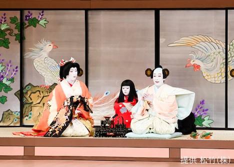 「壽 初春大歌舞伎」夜の部「鰯賣戀曳網」より、中村勘太郎出演回(偶数日)。