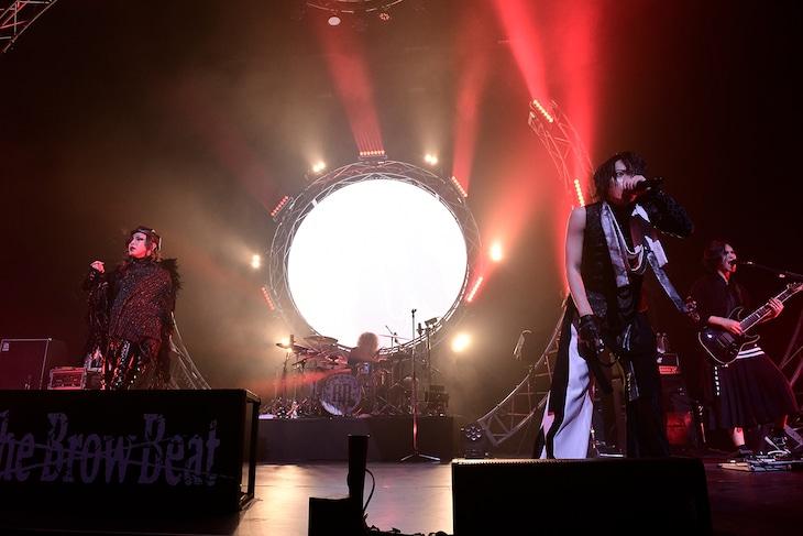 "「The Brow Beat Live Tour 2020 ""Adam""」より。"