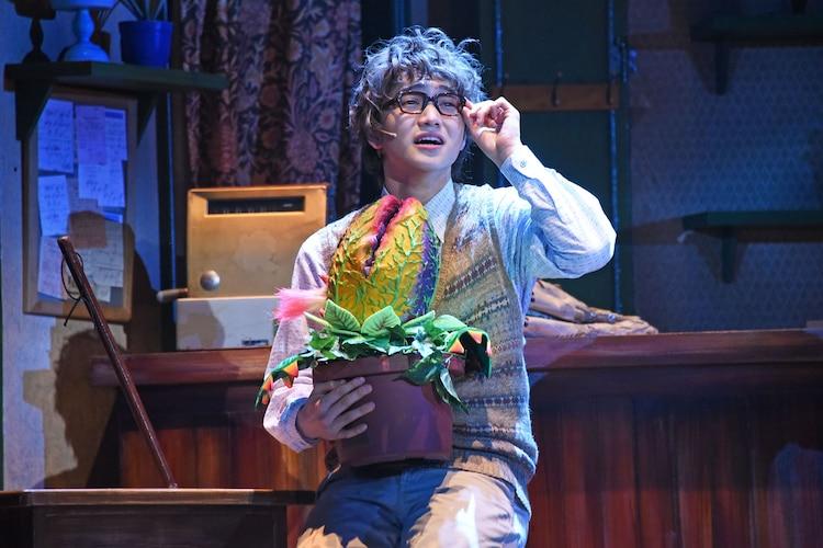 ミュージカル「リトル・ショップ・オブ・ホラーズ」ゲネプロより、三浦宏規演じるシーモア。