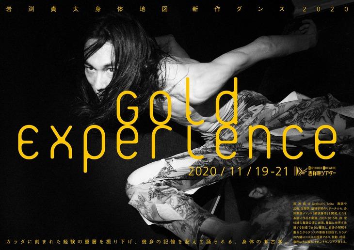 岩渕貞太 身体地図 新作ダンス2020「Gold Experience」チラシ表(撮影:野村佐紀子)
