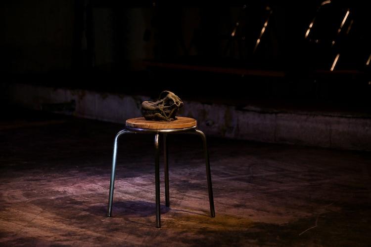 円盤に乗る派「流刑地エウロパ」より。(撮影:濱田晋)
