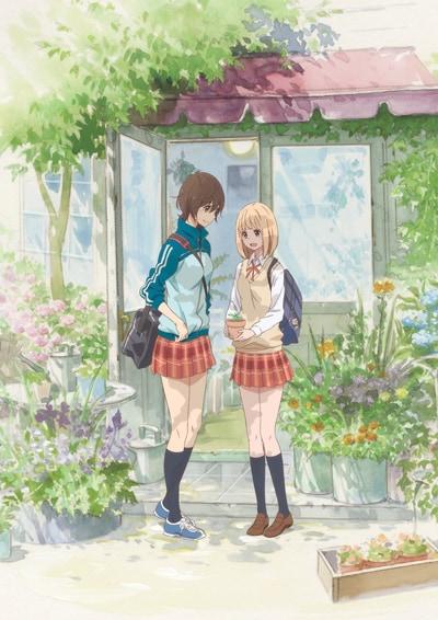 OVA「あさがおと加瀬さん。」