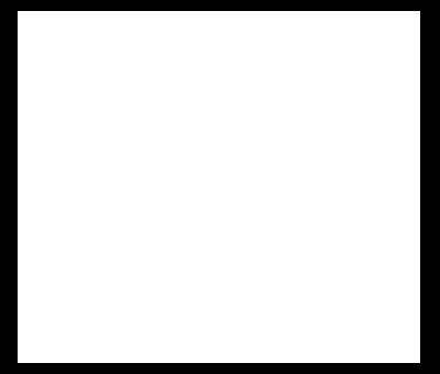 MAD TRIGGER CREW