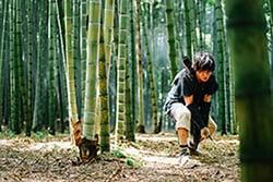 竹林の中でムタと戦う信。