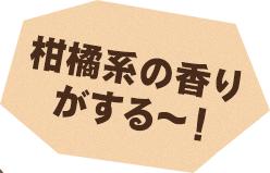 柑橘系の香りがする~!
