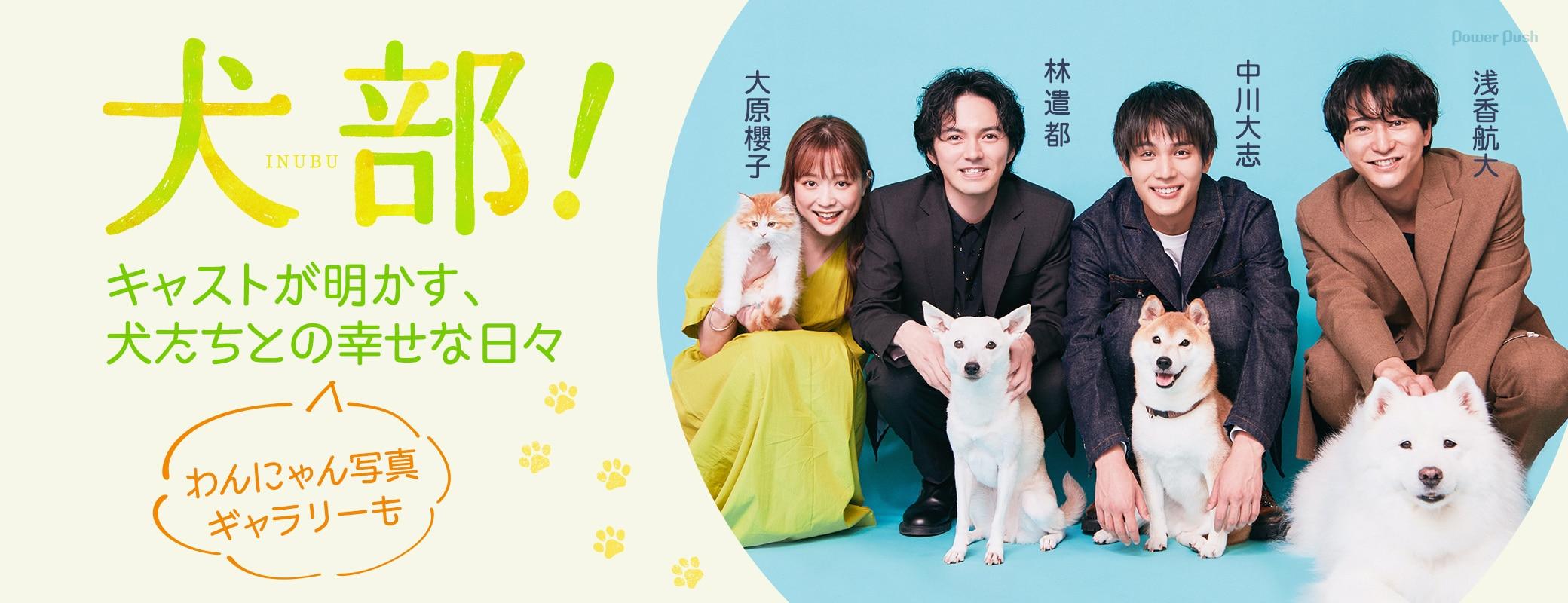 「犬部!」林遣都、中川大志、大原櫻子、浅香航大が明かす、犬たちとの幸せな日々 わんにゃん写真ギャラリーも
