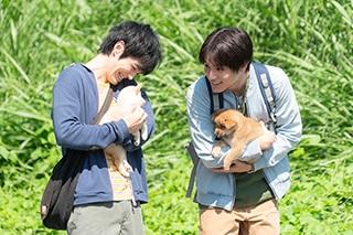 「犬部!」より、林遣都演じる花井颯太(左)と中川大志演じる柴崎涼介(右)。