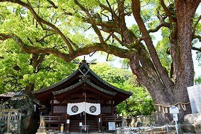 艮神社 (写真提供:おのなび)