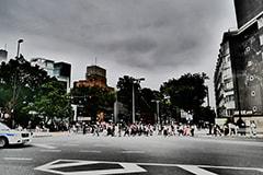 曇り空の日にフィルターを使用して撮影した写真。