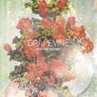 GRAPEVINE「ROADSIDE PROPHET」通常盤