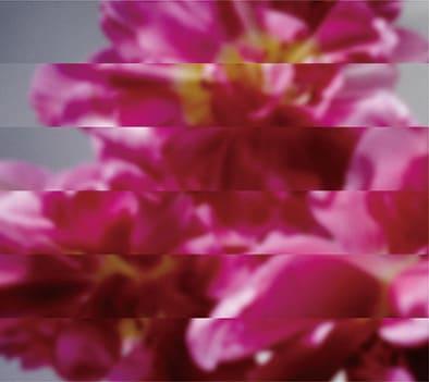 MONDO GROSSO「何度でも新しく生まれる」CD+DVD